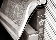 The Rainbow study Bible