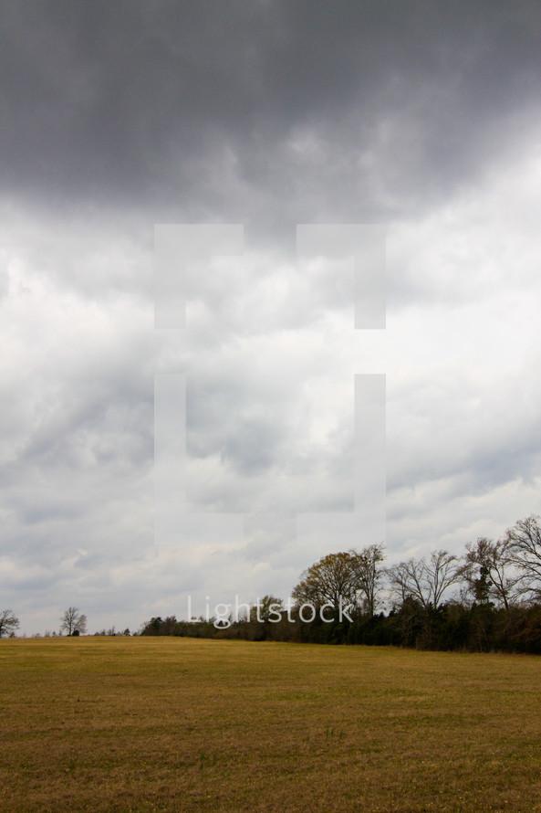 rain clouds over a field