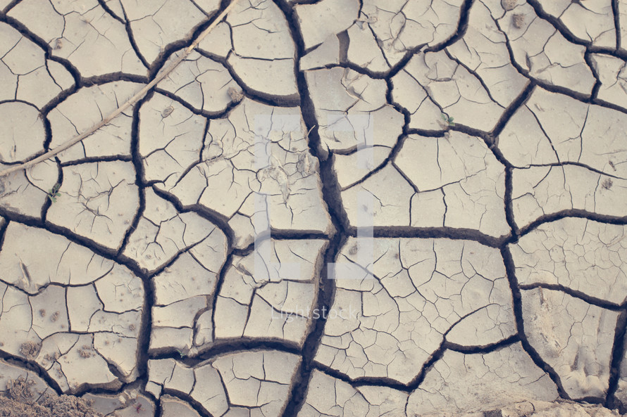 cracks in the soil