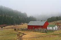 horse, cow, fence, fence line, barn, farm, stable, trees