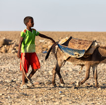 a boy and his donkey in Ethiopia