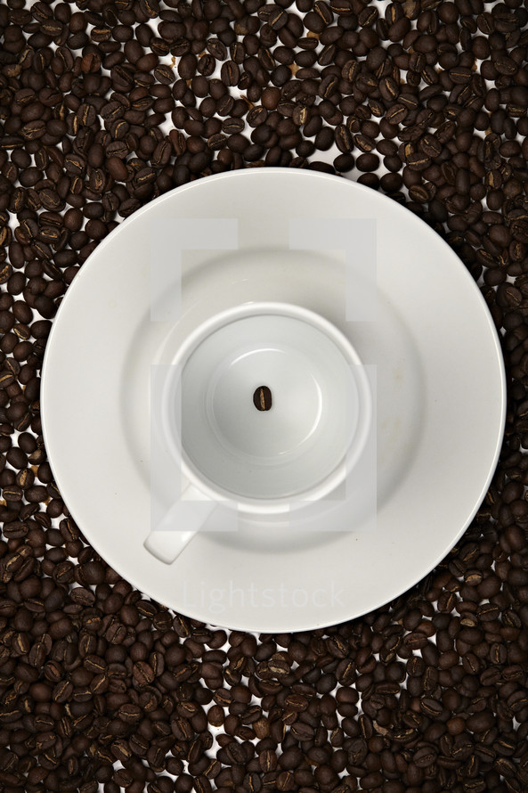 One coffee bean in a white mug - Coffee beans fill the background