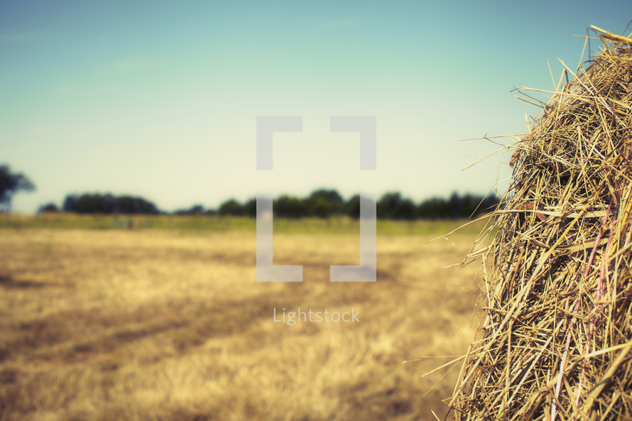 A closeup view of a hay bale