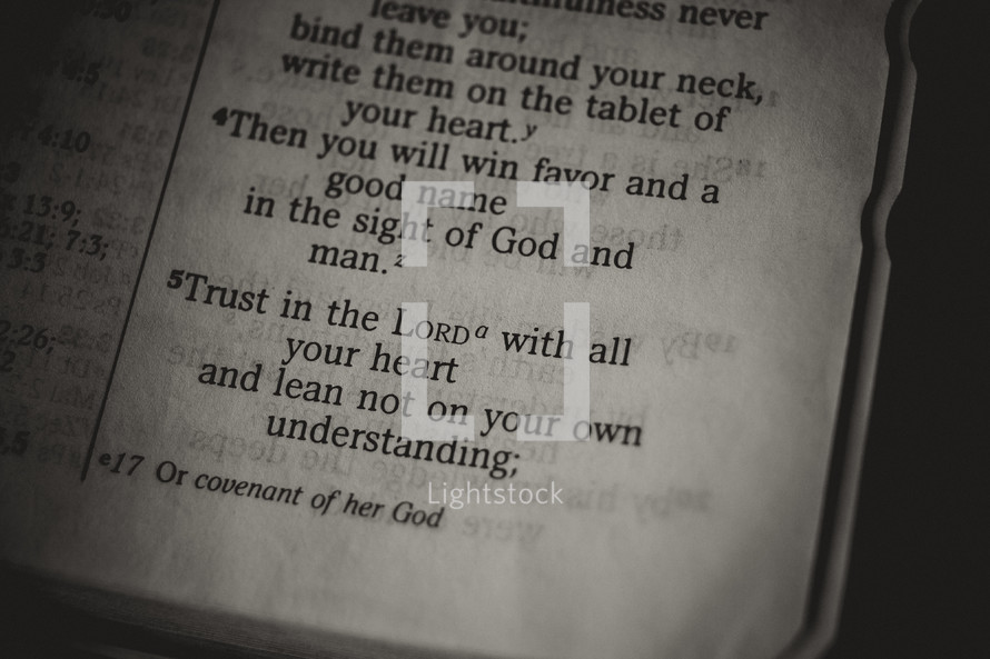 bible verse - trust in the lord