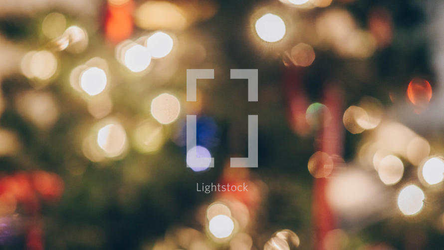 blurry Christmas tree lights