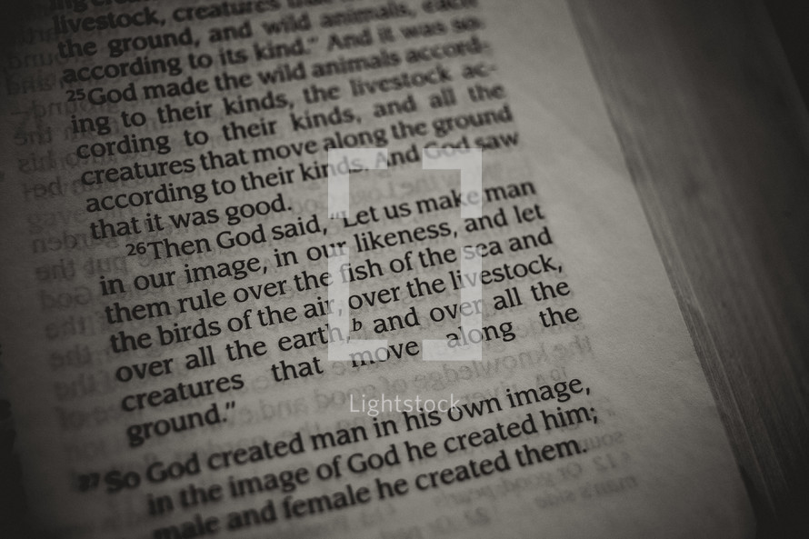 man in his image - Genesis Bible verse