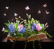 butterflies and flowers on the pages of a book
