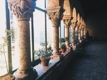 plants between columns in front of windows