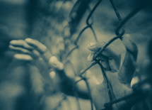 kids hands reaching through a chain link fence