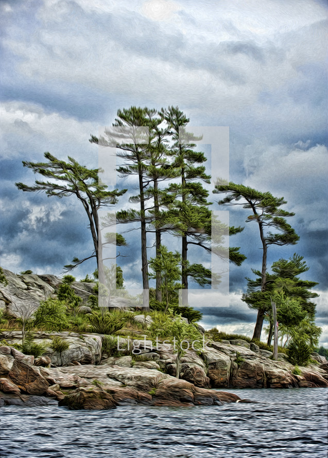 trees by the sea shore