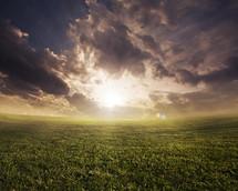 Green grassy field at sunrise