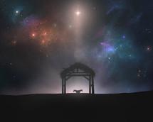 manger under the stars