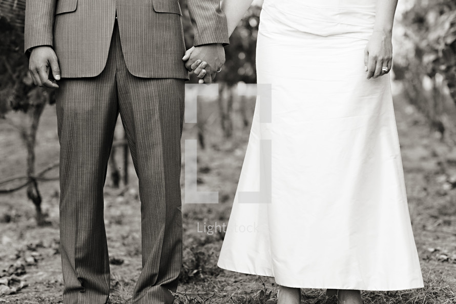 torso of a couple holding hands man in suit woman in wedding dress bride and groom