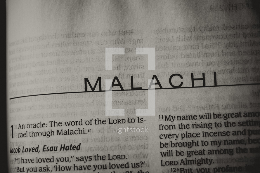 Open Bible in book of Malachi