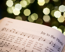 open Hymnal and Christmas tree