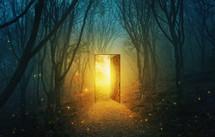 light through an open door in a dark forest
