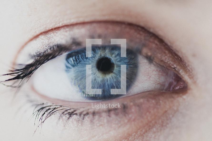 A closeup of a woman's eye.