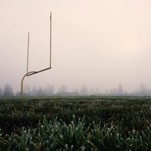 Goal post and frost on grass
