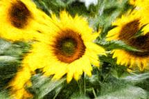 blurry yellow flowers