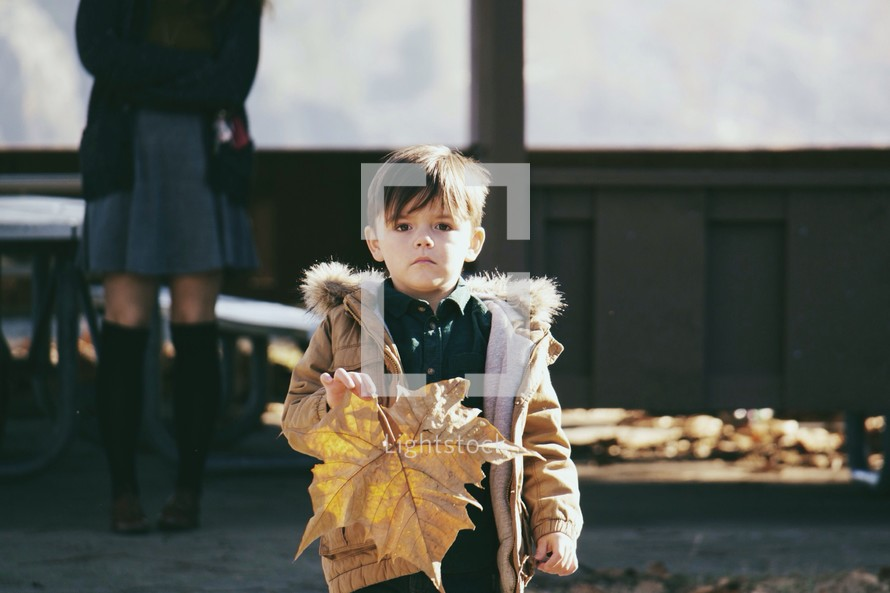 A boy child holding a large fall leaf.