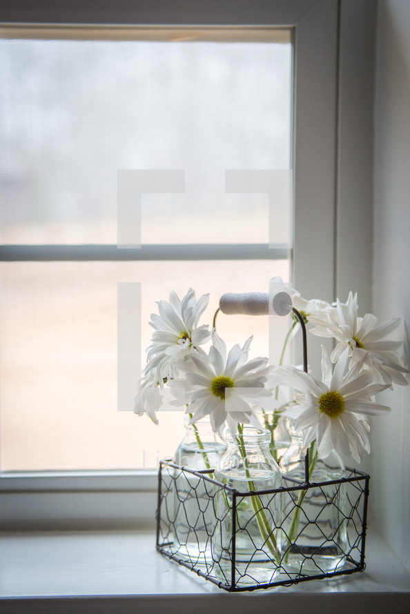 vases of flowers in a window sill