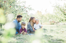 a family sitting in an apple orchard
