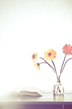 gerber daisies in a vase next to an open Bible