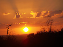 The sun sets over the woods eliminating the summer sky with a warm orange and yellow glow that lights up the evening sky with a summertime sunset telling the world another day has come to an end.