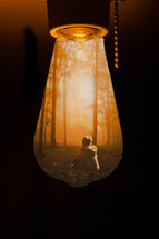 image inside a lightbulb of a boy sitting in a forest alone