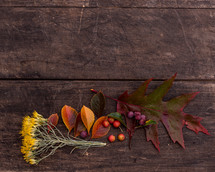 fall foliage on wood