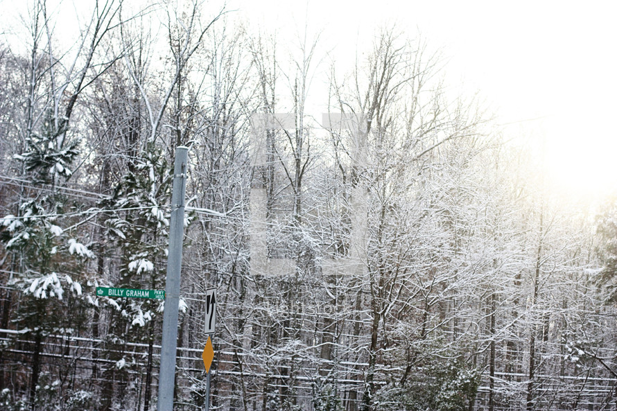 snow covered street signs and power lines