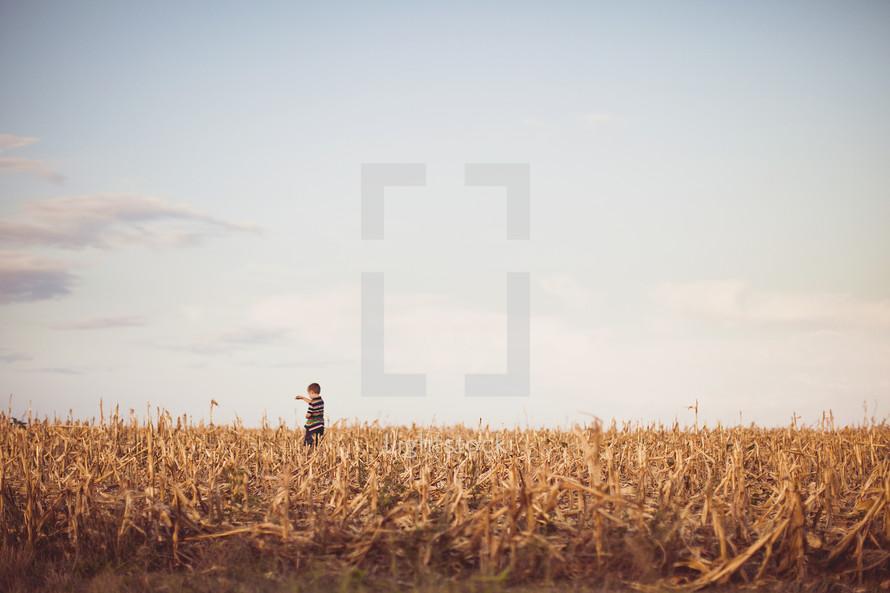 Child walking in wheat field