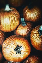 A group of pumpkins