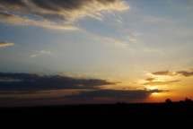 Sunset in the Safari