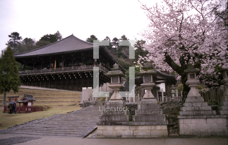Japanese house on hill with stone pillars and pink bloosom tree to the side.