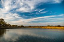 rural pond