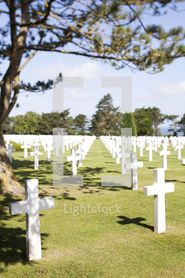 cross shaped tombstones in a cemetery