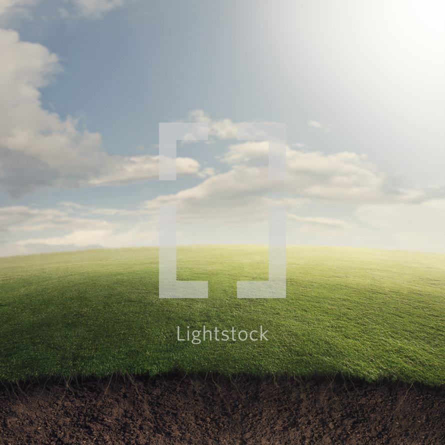 A grassy field on a summer day with an abstract underground dirt layer.