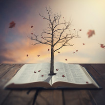 Leaves blowing off a tree, rooted in a Bible, resting on wooden planks.