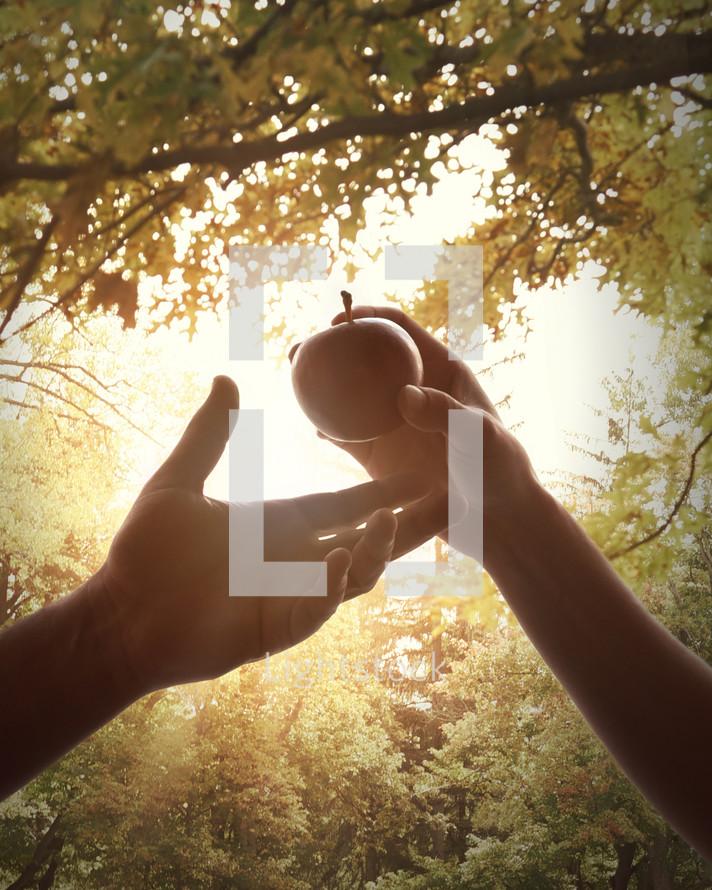 Eve handing Adam an apple