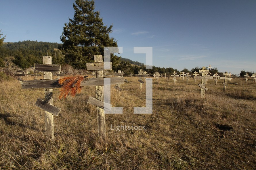 simple wooden crosses in a graveyard