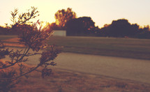 Track and Field | Sunset | New Beginnings | New Day | Summer | Light | Journey