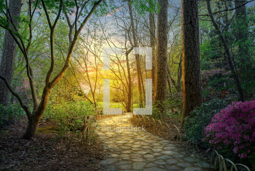 A beautiful pathway through the garden at sunset