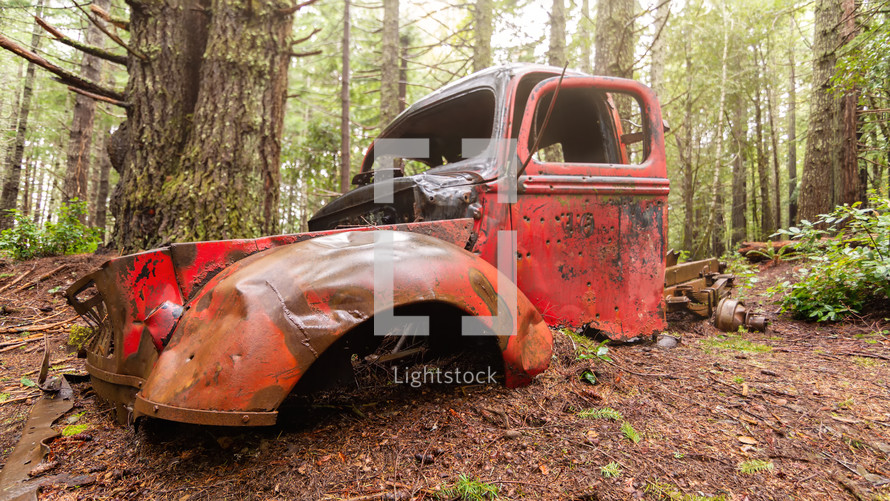 abandoned truck in a forest
