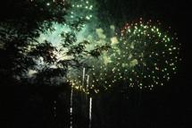 fireworks bursting over trees in the night sky
