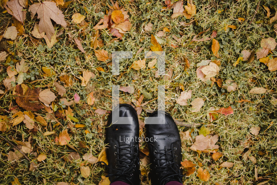 shoes standing in fall leaves