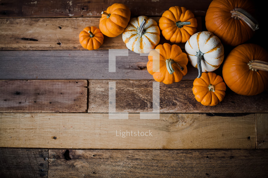 pumpkins on wood boards
