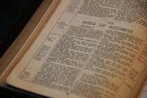 Open Bible in book of Solomon