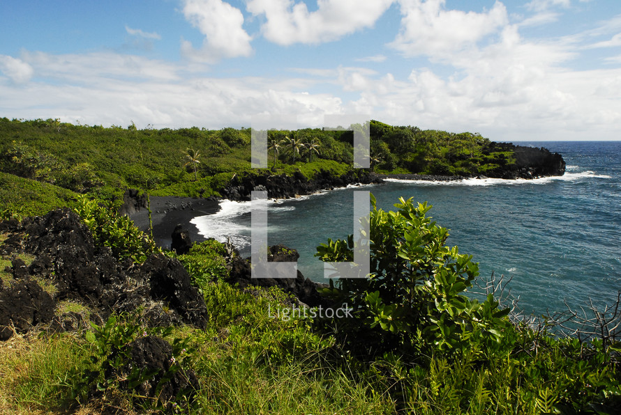 A black sand ocean cove surrounded by green vegetation.