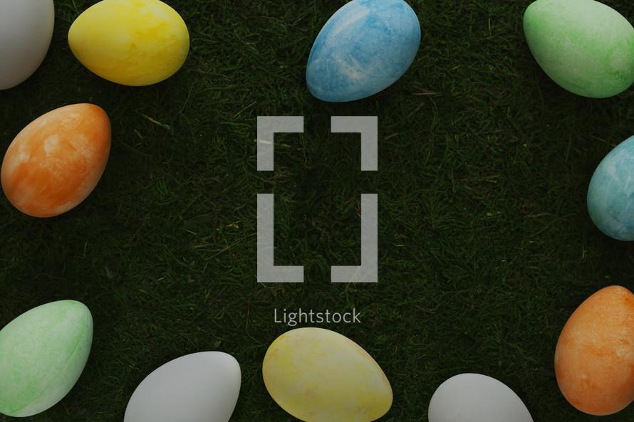 Eggs on moss
